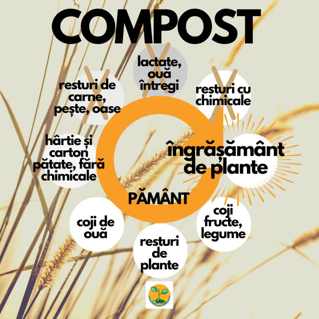 2021 in ianuarie compost